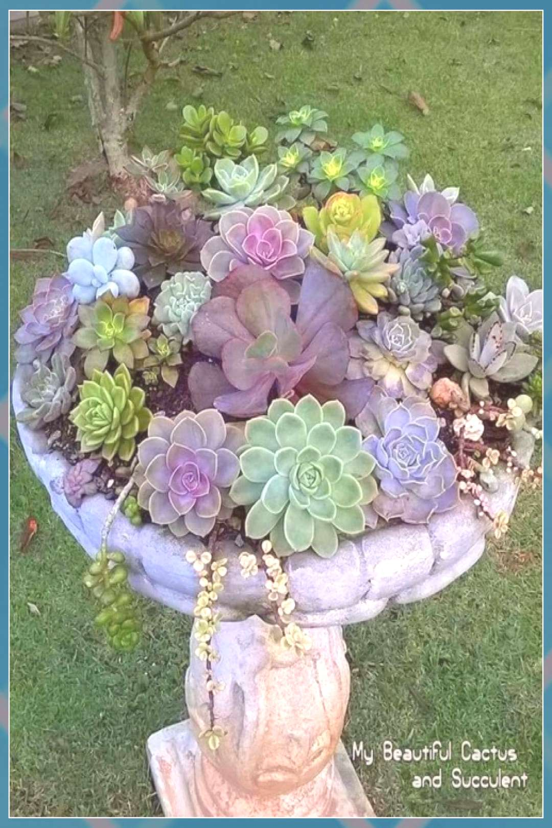 15 most beautiful container garden flowers ideas for your home Veranda € ... ... flowers plants v
