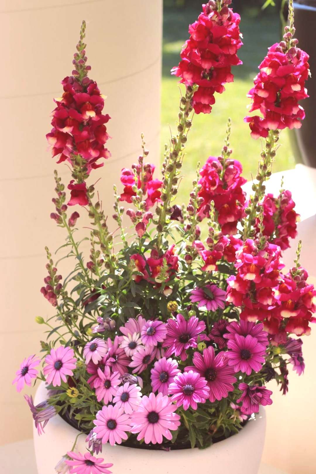 16 Creative Container Designs -  Try these great ideas for plant combinations that play well togeth