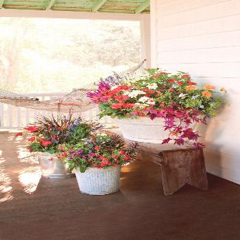 30 Colorful Spring Container Gardens -  Container gardens offer the perfect landscaping solution fo