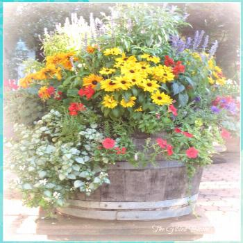 Container Gardens: 8 Fantastic Ideas flowers plants vegetable gardening planters containers boxes