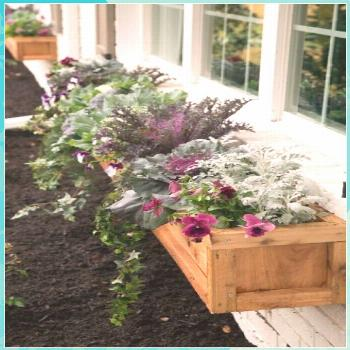 Curb Appeal and Landscaping Ideas from Fixer Upper flowers plants vegetable gardening planters cont