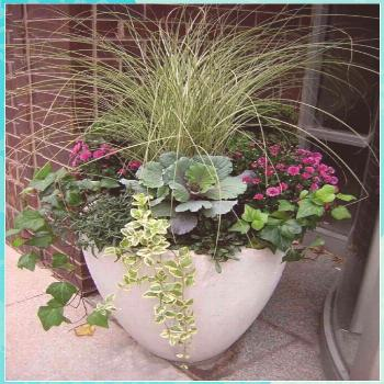 Fabulous Fall Flower Containers flowers plants vegetable gardening planters containers boxes