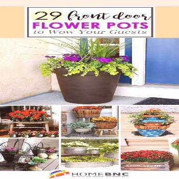 Front Door Flower Pot Ideas....use geraniums to repel bees and mosquitos#bees