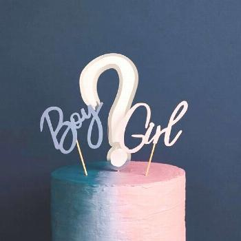 Gender Reveal Cake Topper Set,Gender Reveal Party,Gender Reveal Cake Topper,Boy or Girl Cake Topper