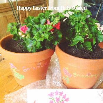 Happy Easter from Hair Solved The Hair Solved social media team are keeping busy today and trying t