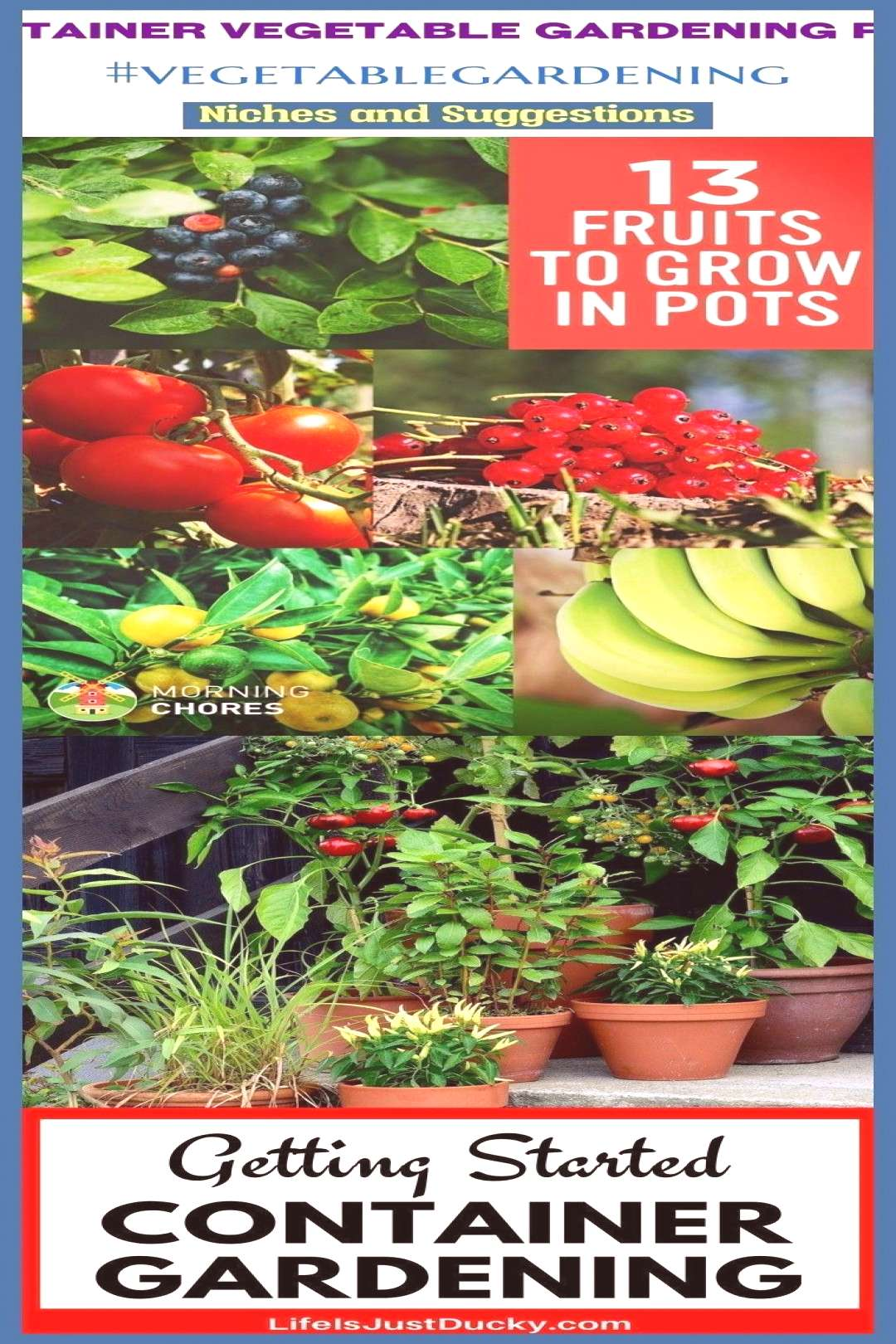 Container vegetable gardening pots cont... -  Container vegetable gardening pots cont…#blog   -