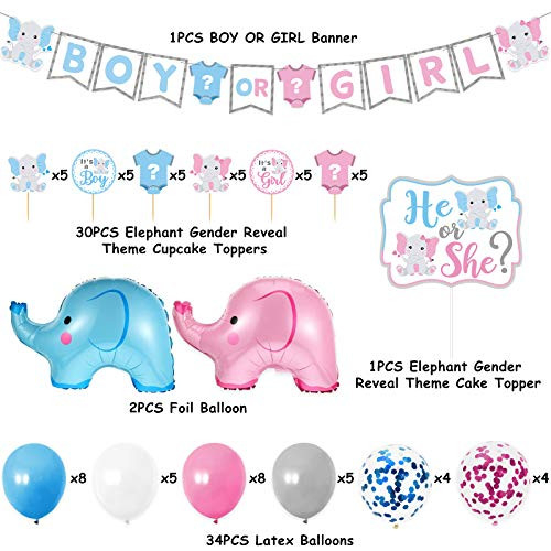 Elephant Gender Reveal Party Supplies Blue and Pink Baby
