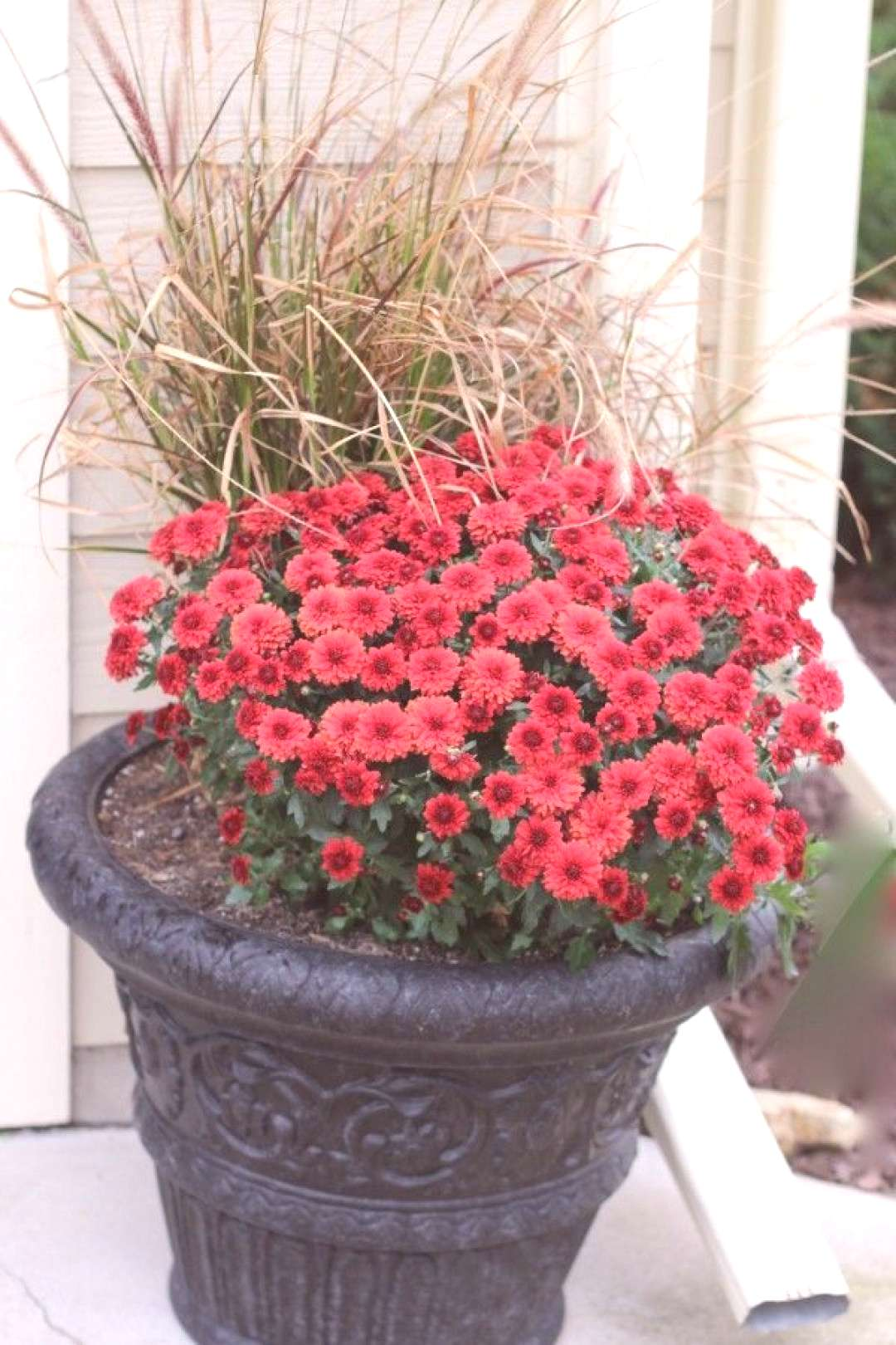 Fall Planter - reuse your grasses! -  Fall Planter – reuse your grasses! – Momcrieff  -