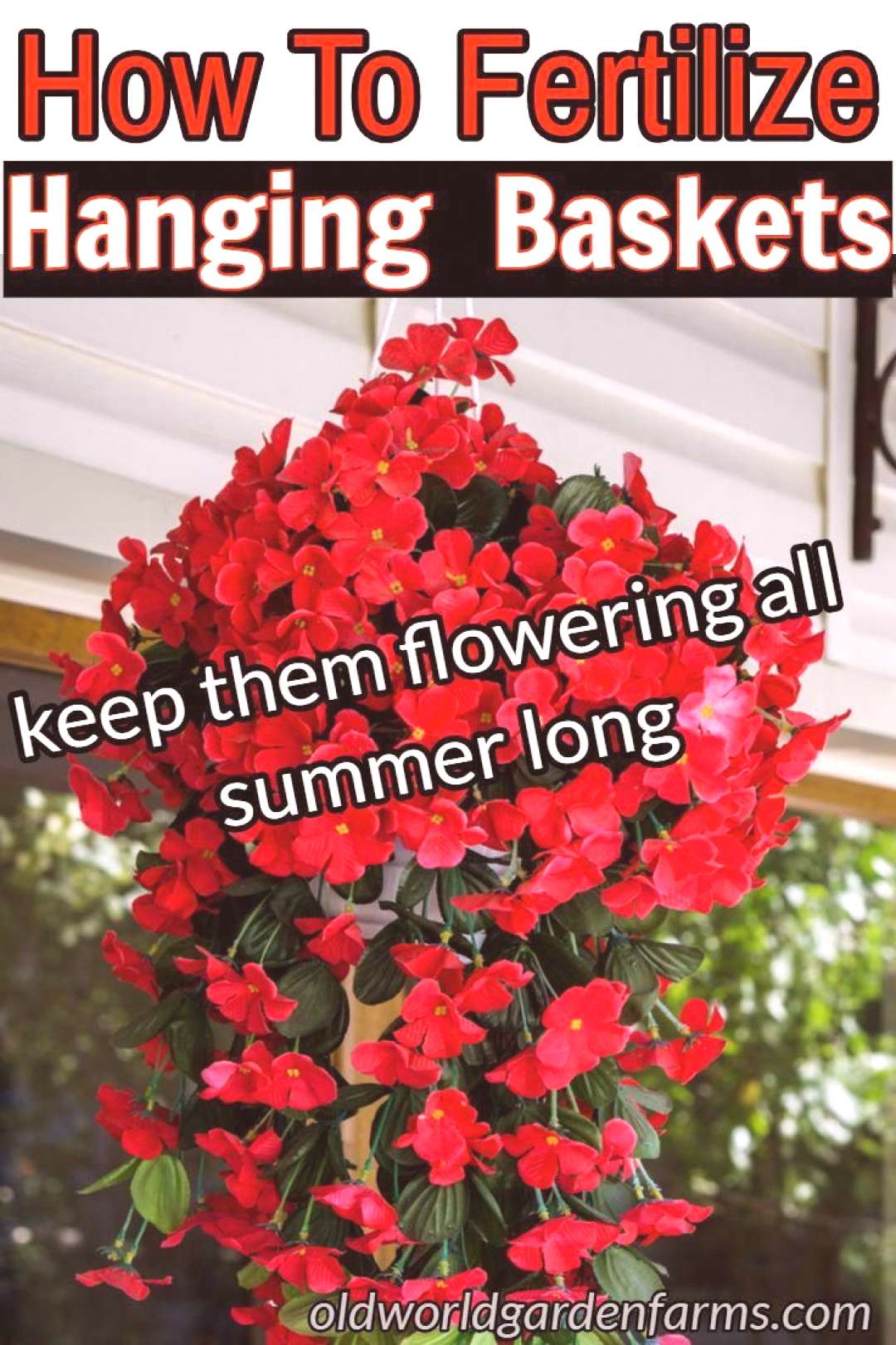 How To Fertilize Hanging Baskets To Keep Them Flowering All Summer! -  flower garden basic guide  -